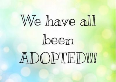 Check back again soon to see if we have more adoptables!!